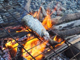 夫婦でユーコン川を川下り 〜 グレイリングとムースと焚き火、4・5・6日目。