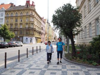 両親がプラハにやって来た〜ビーフタルタルと、チェコビールとバリング度数の話